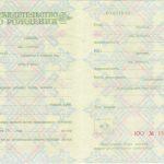 -Купить свидетельство о рождении СССР России 1950-х г.г. 0